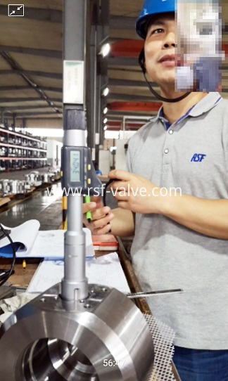 RSF VALVE_Telematic Inspection with European Customer_1