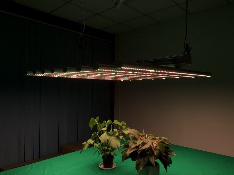 600w led grow light bar