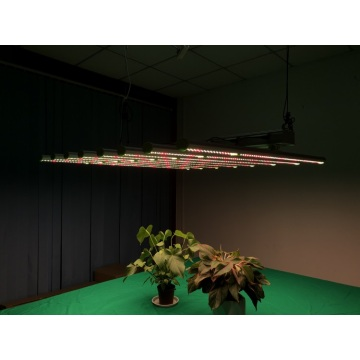 Grow Light 600 Watt Home Planting
