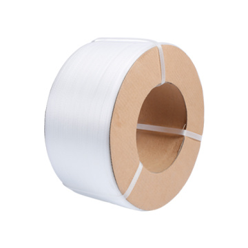 Transparent color PP packaging plastic strap factory