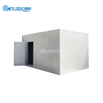 Blast Freezer Cold Room