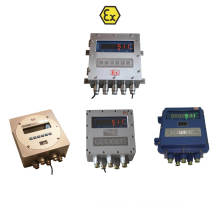 Isolation Ex Weighing Indicator