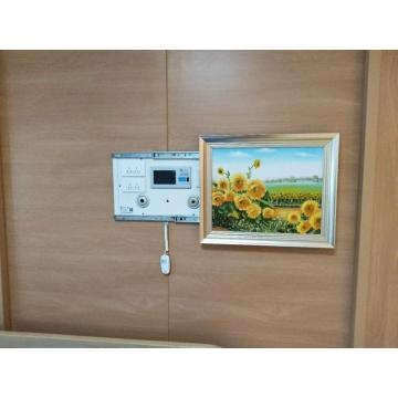 High Level Hospital Mural Bed Head Panel Cost