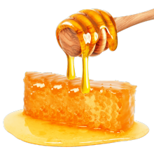 bulk sale natural and pure organic ela honey