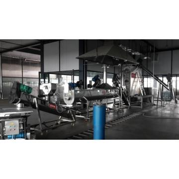 The stainless steel  Steaming line of flour