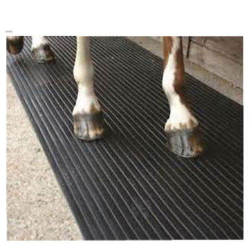 Rubber Backed Floor Mats