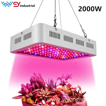 Best led grow light 2000w