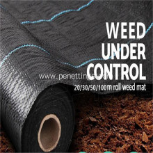 nursery blueberry garden planting weed control fabric