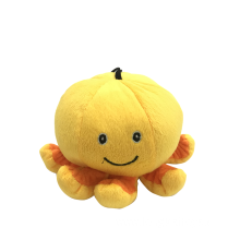 Plush Pumpkin Pet Toy