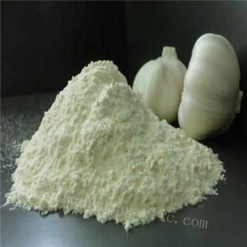 Direct selling hot selling garlic powder