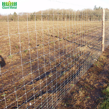 Ring Lock Woven Galvanized Farm Field Wire Fence