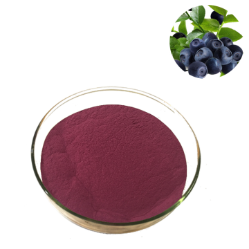Factory Supply bilberry fruit powder