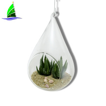 Glass Teardrop Terrarium Hanging Air Plants Holders