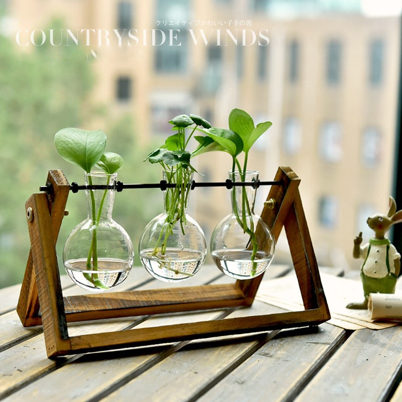 Creative Green Radish Transparent Glass Flower Arrangement Vase Container Small Fresh Desktop Decoration Decoration Home Decor