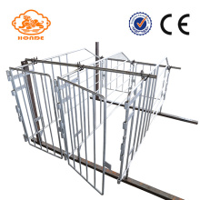 Hot dip galvanized gestation stalls