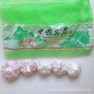 normal white Garlic in packages from jin xiang