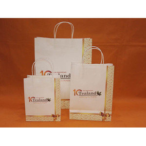 Customer print Paper shopping bag-tealand