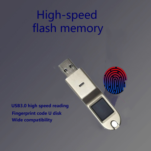 Encrypted fingerprint U disk