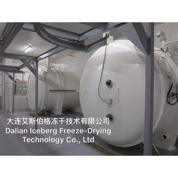 Different Loading Capacity Freeze Dryer