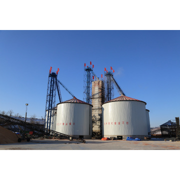 Wholesale Price of Mung Bean Dryer