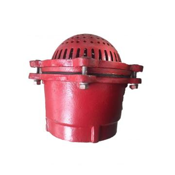 Cast Iron Foot Valve