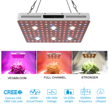 2500 W COB Led Grow Light Full Spectrum