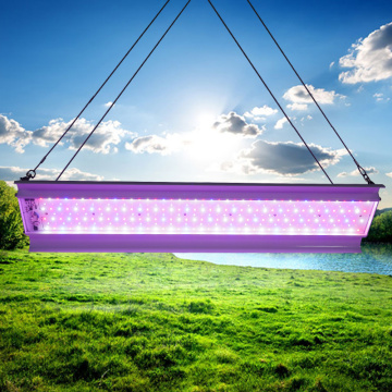 Driverless DOB 80w Linear LED grow Light