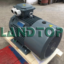 380v Y2 Three Phase Electric Motor 22kw