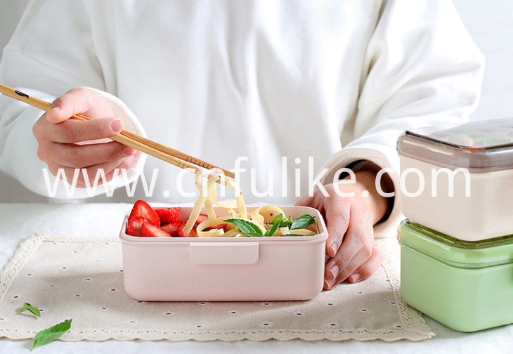 Lunch Box 600ml