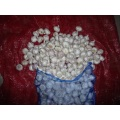 High Quality Normal White Garlic Size 4.5cm