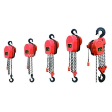 DHS Series electric chain hoists on sale