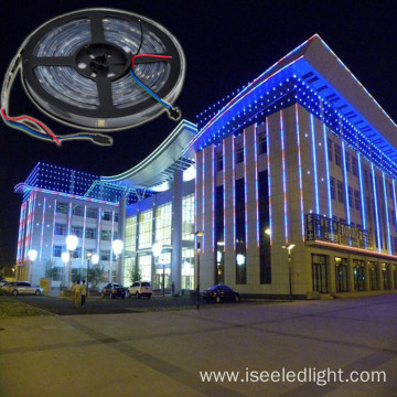 Addressable dmx rgb led flexible strip DC12V