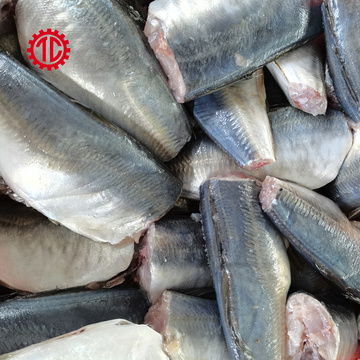 Canned Mackerel Fish in Vegetable Oil Export And Import