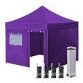 Mosquito Window Folding 10x10 Canopy Tent Outdoor
