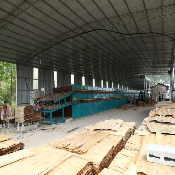 Plywood Roller Veneer Drying Machine