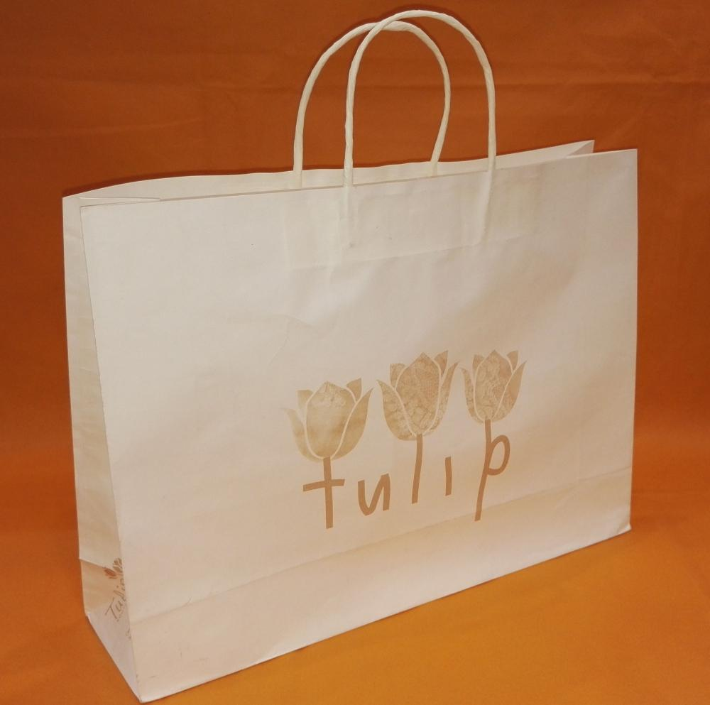 Paper Shopping Bag with Print