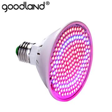 LED Grow light Full Spectrum Fitolamp Hydroponics Phyto lamp Phyto-Lamp For Vegetable Flower Seedlings Plants Lighting