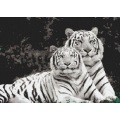 Black and white tiger art animal mosaic tiles