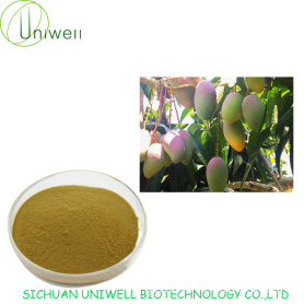 Irvingia Gabonensis Extract Powder 4:1 10:1