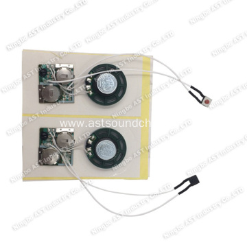 China Sound Module, Voice Chip, Sound Module, Pre-Record Sound Module