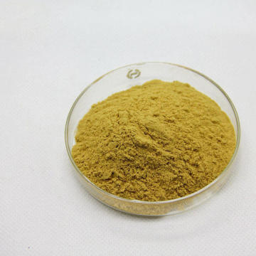 Bitter Melon Extract Powder