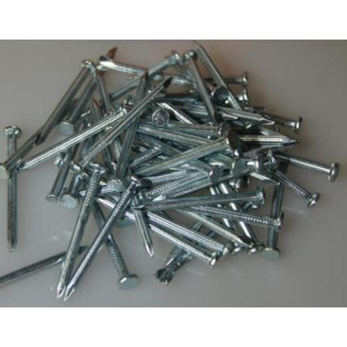 electro/hot dipped galvanized concrete steel nail