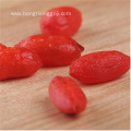 2018 organic goji berries Natural Lycium barbarum