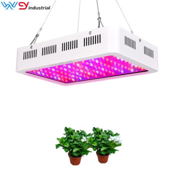 Hydroponic and greenhouse led grow light 2000W