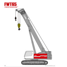 FWT65 Telescopic Crawler  Crane For Sale