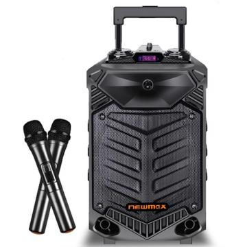 12''Karaoke Bluetooth Speaker With Trolley
