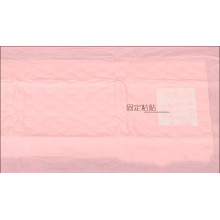 disposable insert pad Women