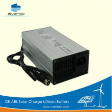 DELIGHT Lithium Ion Battery Charger 12v