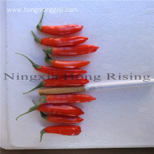 Ningxia factory wholesale bulk dried organic goji berry
