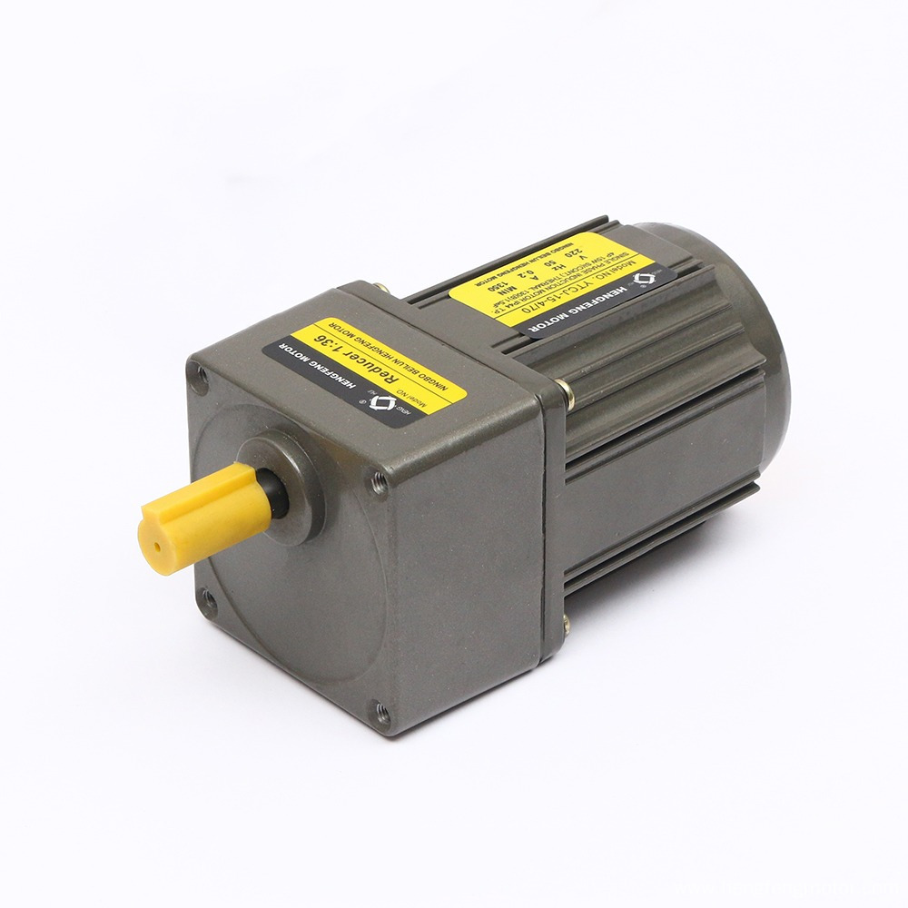 15W 50/60Hz Reversible Gear Motor with Gearbox